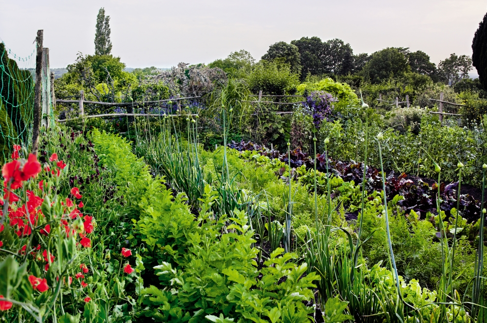 Its Great Outdoors So Guide To The Best Gardens
