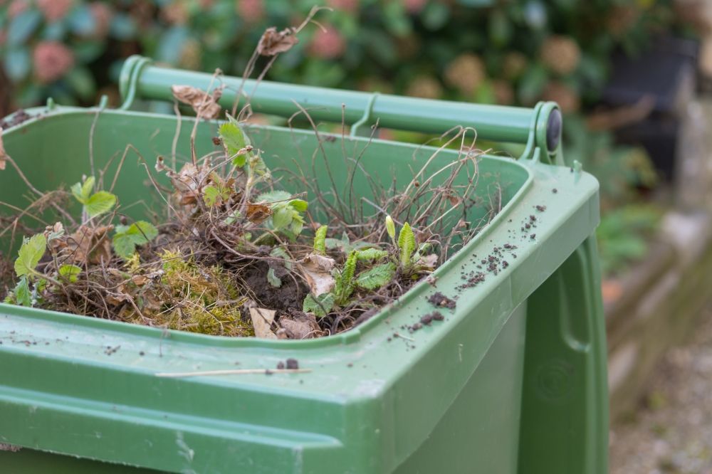 Tonbridge Council chiefs give green light to garden waste charge