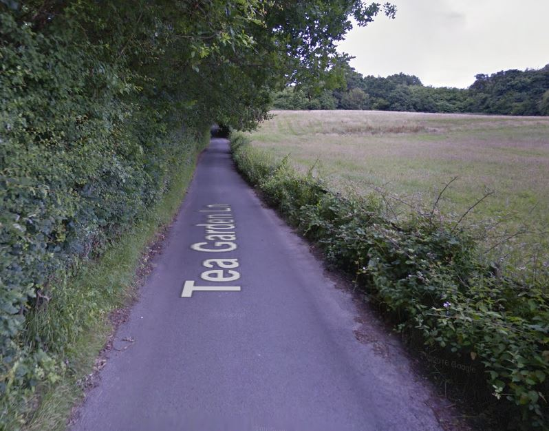 Man exposes himself to dog walker near Rusthall