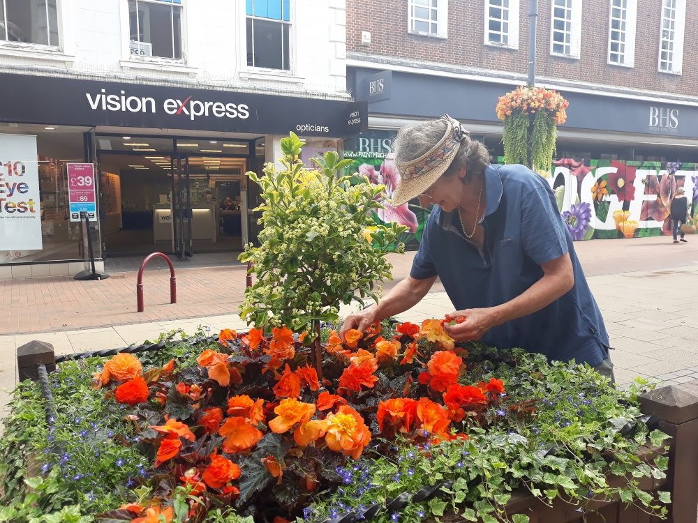 Sweet smell of success on national stage for Royal Tunbridge Wells in Bloom