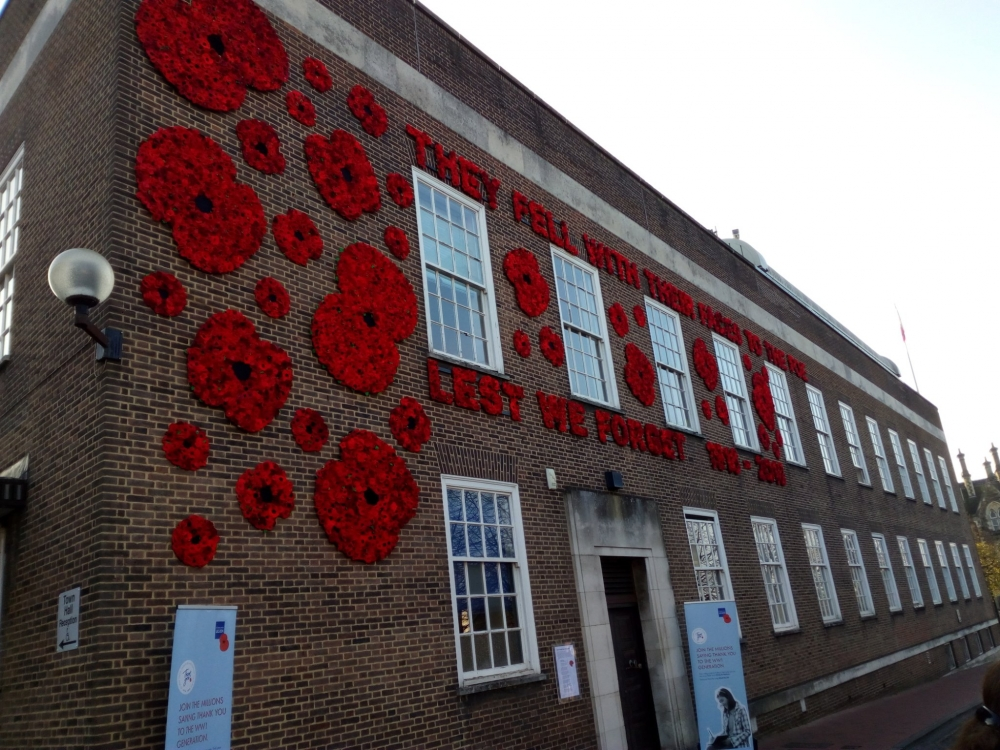 Everything's coming up poppies for Royal British Legion appeal
