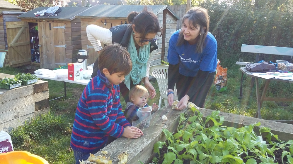 Cultivate a sense of wellbeing on Tonbridge's Let's Grow allotment