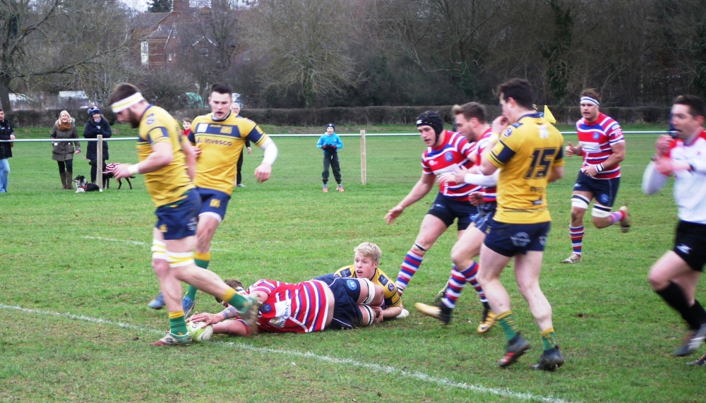 Rugby: Tonbridge Juddians in dazzling form against Henley