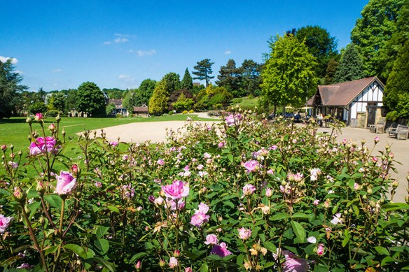 Calverley Grounds