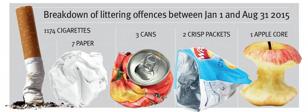 Breakdown of littering offences between Jan 1 and Aug 31 2015